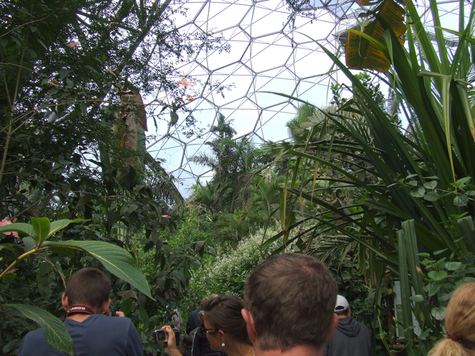 Picture: Tour through the Eden Biome, Image Credit: Photographer Katrina Malley
